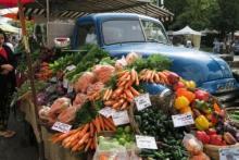 Saturday organic market